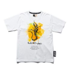 Lizard CS PRICE : ¥9,350